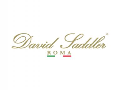 DAVID SADDLER
