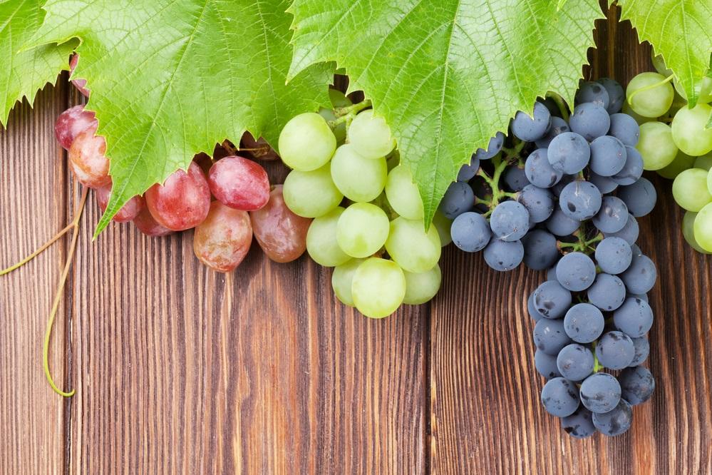 Bianca, rossa e nera: viva l'uva italiana!