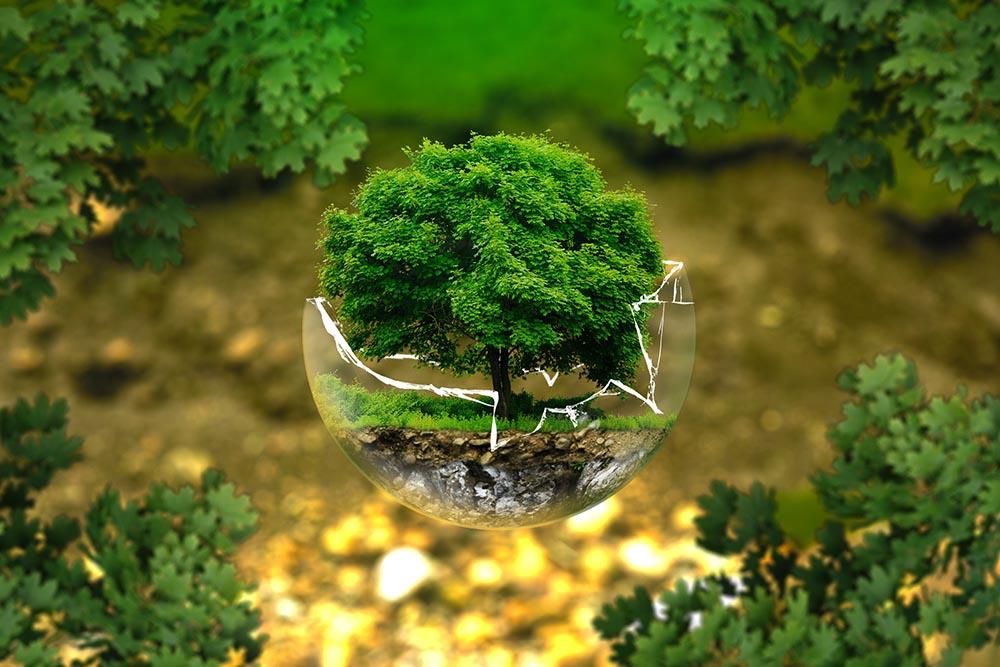 Earth Day, la Giornata dedicata alla salvaguardia del Pianeta
